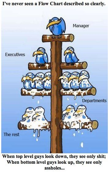 Ive Never Seen A Flow Chart Described So Clearly Manager Executives Departments The