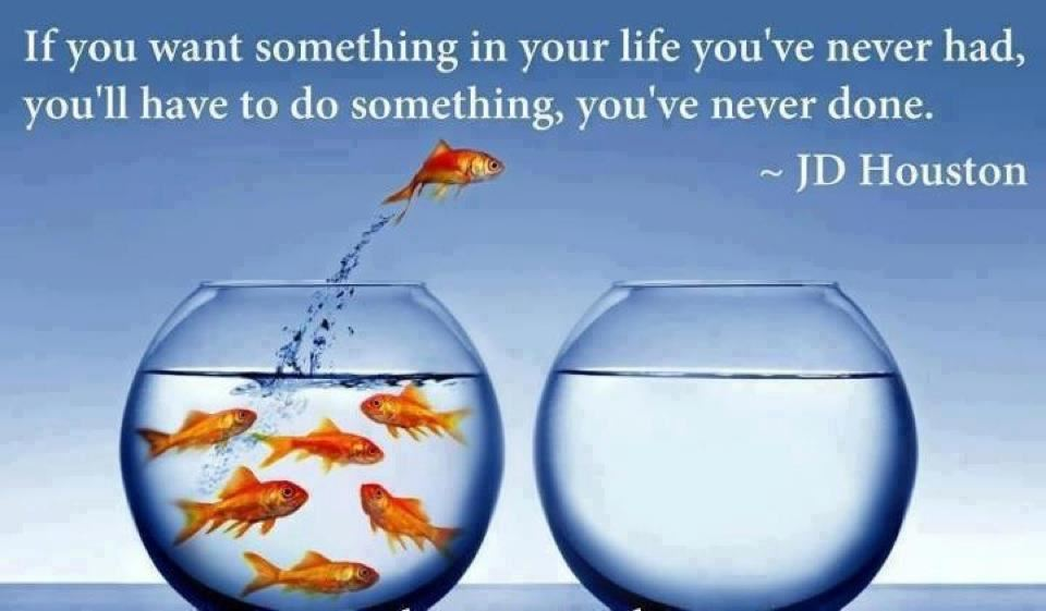 If you want something in your life you've never had, you'll have to do something, you've never done.  Wisdom Motivational Change Courage Quote ~ James Dudley Houston