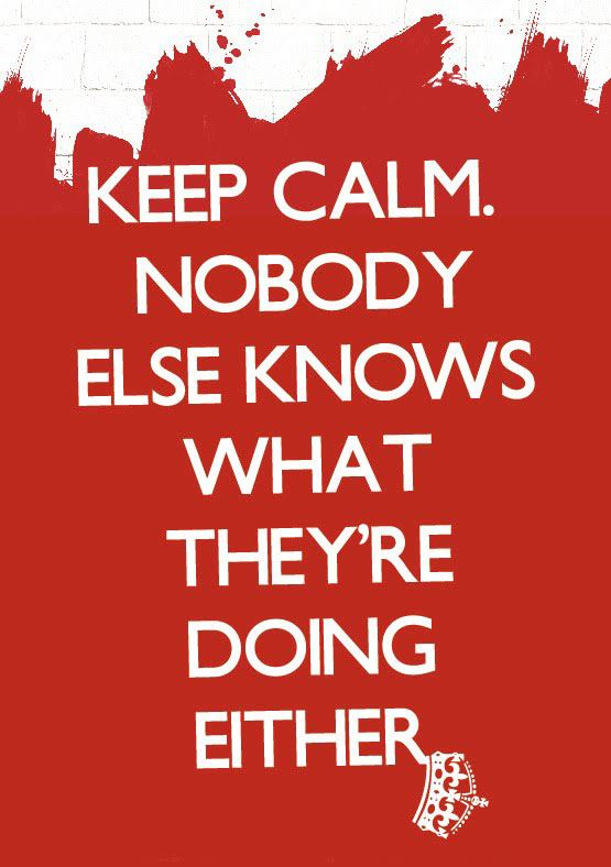 Keep calm. Nobody else knows what they're doing either.  Wisdom Funny Quote